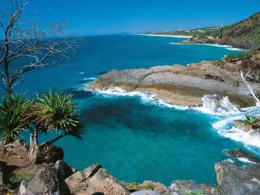 noosa national park in Sunshine coast